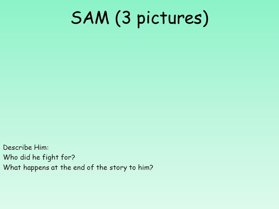 SAM (3 pictures) Describe Him: Who did he fight for? What happens at the end of the story to him?