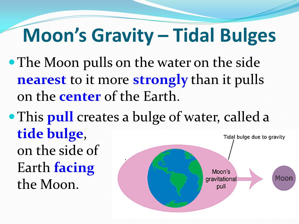 Moon's Gravity – Tidal Bulges The Moon pulls on the water on the side nearest to it more strongly than it pulls on the center of the Earth. This pull