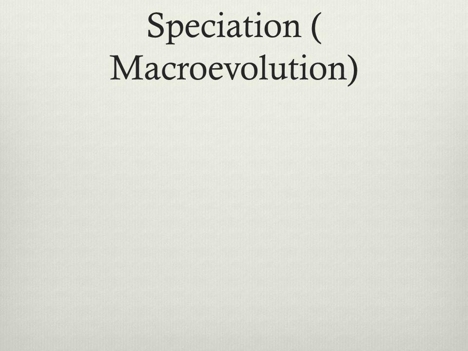 Speciation ( Macroevolution)