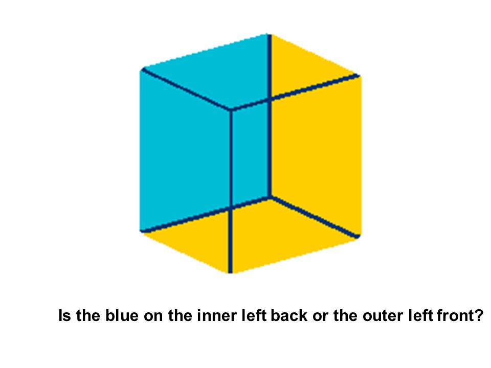 Is the blue on the inner left back or the outer left front