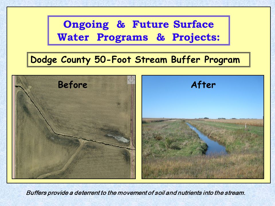 Ongoing & Future Surface Water Programs & Projects: BeforeAfter Dodge County 50-Foot Stream Buffer Program Buffers provide a deterrent to the movement of soil and nutrients into the stream.