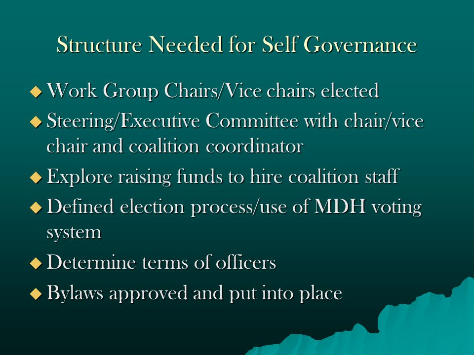 Structure Needed for Self Governance  Work Group Chairs/Vice chairs elected  Steering/Executive Committee with chair/vice chair and coalition coordinator  Explore raising funds to hire coalition staff  Defined election process/use of MDH voting system  Determine terms of officers  Bylaws approved and put into place