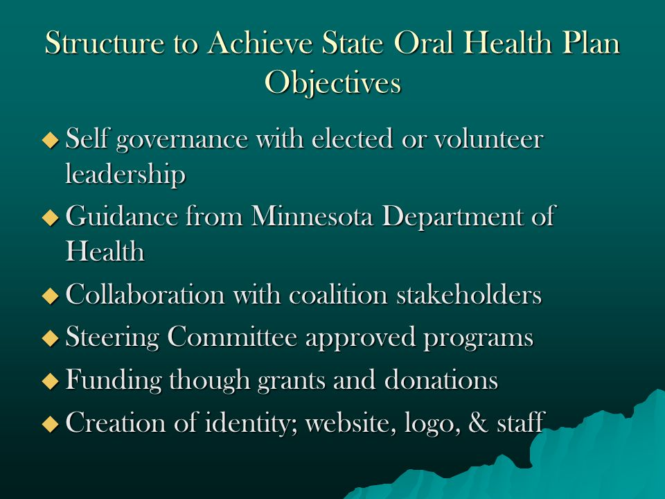 Structure to Achieve State Oral Health Plan Objectives  Self governance with elected or volunteer leadership  Guidance from Minnesota Department of Health  Collaboration with coalition stakeholders  Steering Committee approved programs  Funding though grants and donations  Creation of identity; website, logo, & staff