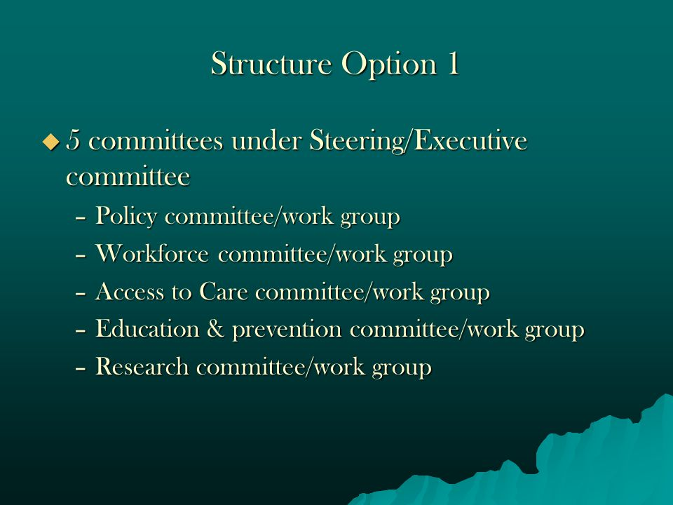 Structure Option 1  5 committees under Steering/Executive committee –Policy committee/work group –Workforce committee/work group –Access to Care committee/work group –Education & prevention committee/work group –Research committee/work group