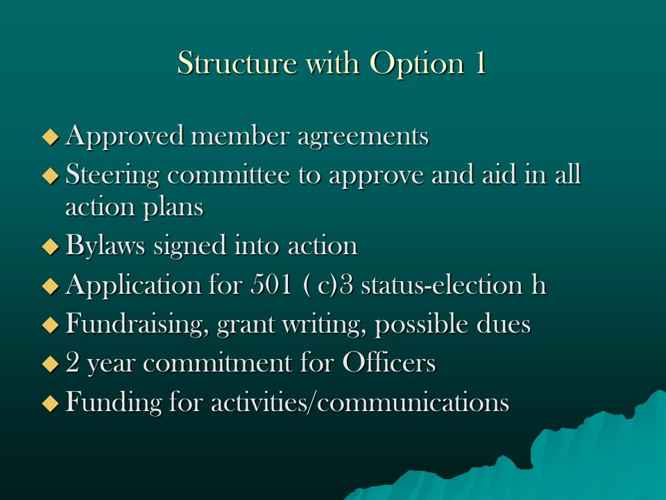 Structure with Option 1  Approved member agreements  Steering committee to approve and aid in all action plans  Bylaws signed into action  Application for 501 ( c)3 status-election h  Fundraising, grant writing, possible dues  2 year commitment for Officers  Funding for activities/communications