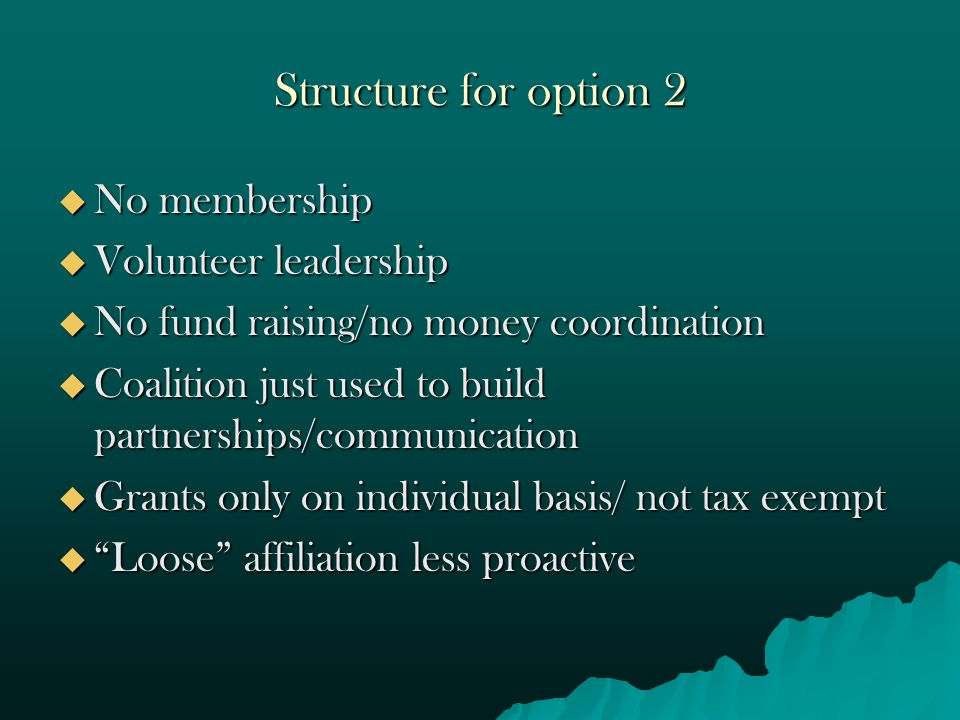 Structure for option 2  No membership  Volunteer leadership  No fund raising/no money coordination  Coalition just used to build partnerships/communication  Grants only on individual basis/ not tax exempt  Loose affiliation less proactive