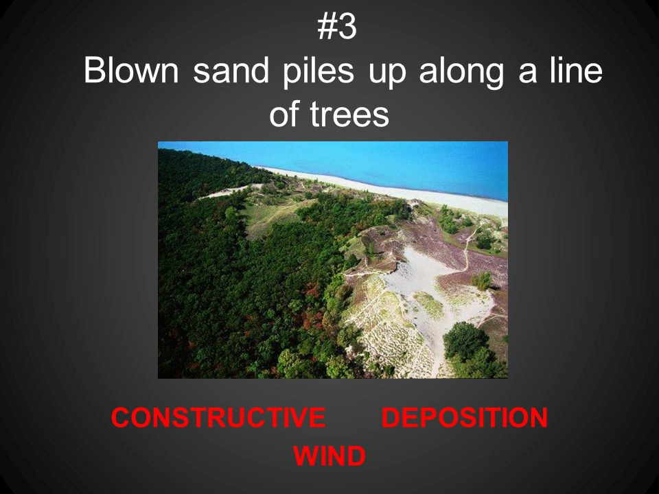 CONSTRUCTIVE DEPOSITION WIND #3 Blown sand piles up along a line of trees