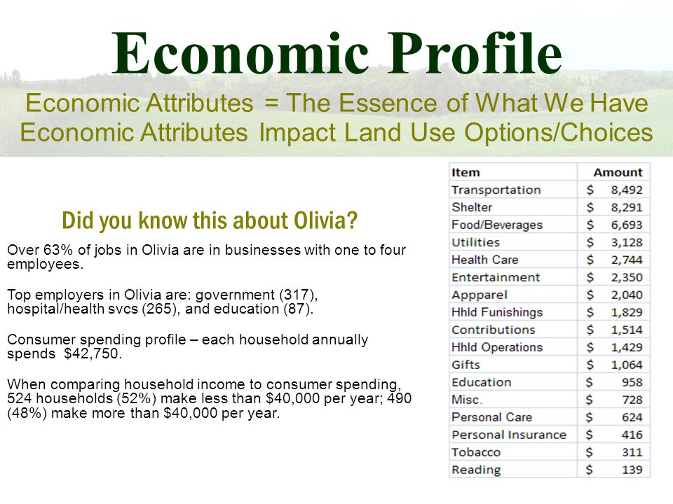 Economic Profile Economic Attributes = The Essence of What We Have Economic Attributes Impact Land Use Options/Choices Did you know this about Olivia.