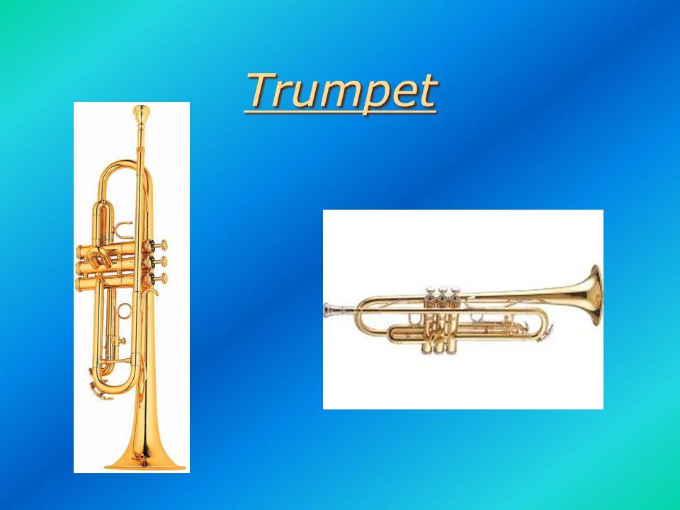 Saxophone Saxophone AltoTenor Baritone