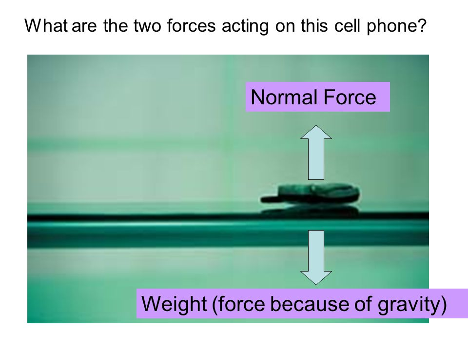 What are the two forces acting on this cell phone Weight (force because of gravity) Normal Force