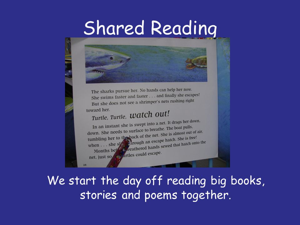 Shared Reading We start the day off reading big books, stories and poems together.