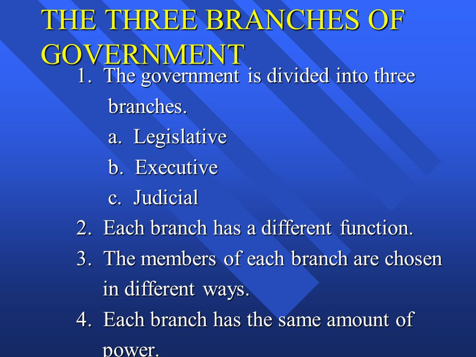 THE THREE BRANCHES OF GOVERNMENT 1. The government is divided into three branches. branches. a. Legislative a. Legislative b. Executive b. Executive c