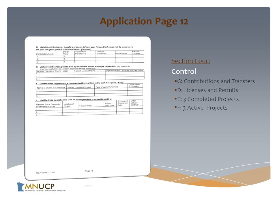 Application Page 12 Section Four: Control  G: Contributions and Transfers  D: Licenses and Permits  E: 3 Completed Projects  F: 3 Active Projects