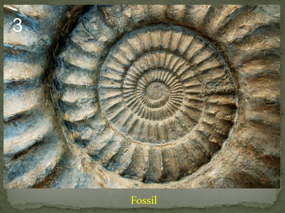 Minerals Non-Minerals