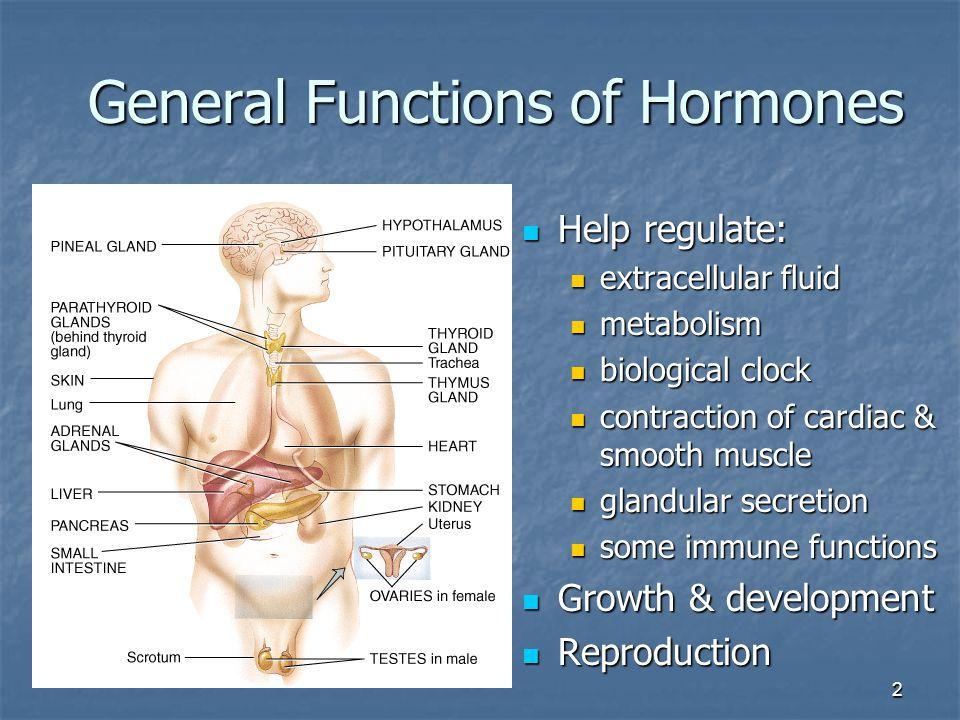 2 General Functions of Hormones Help regulate: Help regulate: extracellular fluid extracellular fluid metabolism metabolism biological clock biologica
