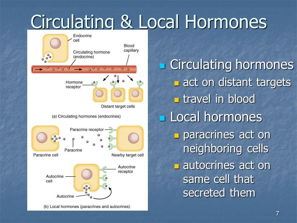 7 Circulating & Local Hormones Circulating hormones Circulating hormones act on distant targets act on distant targets travel in blood travel in blood