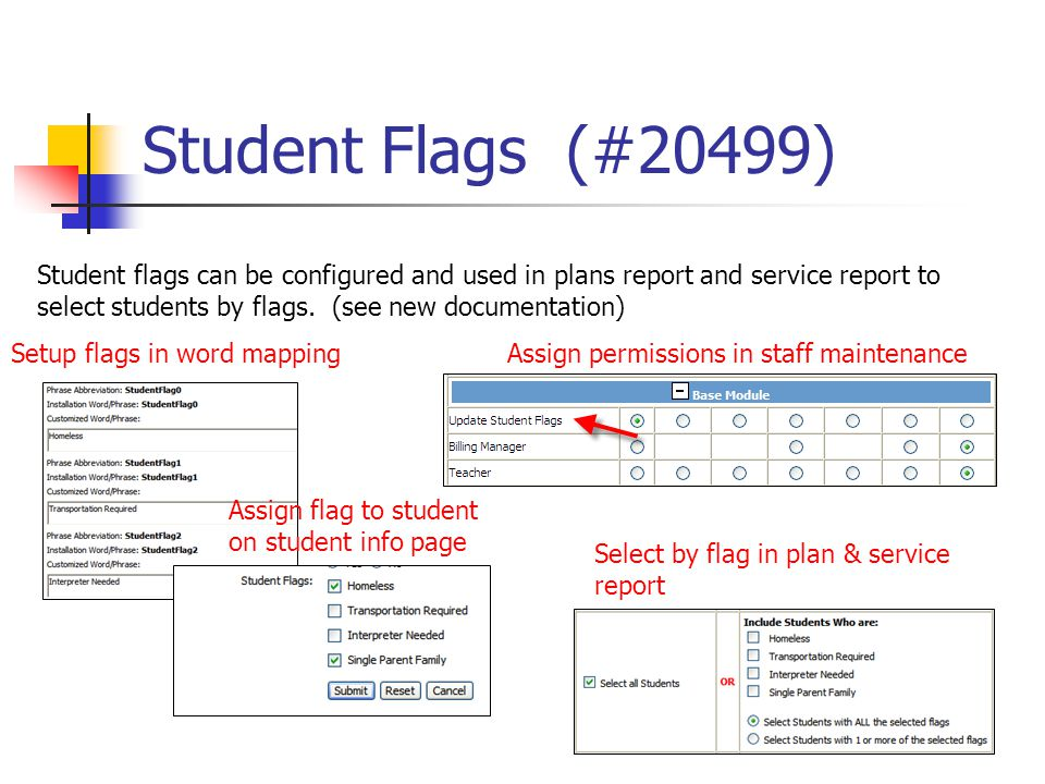 Student Flags (#20499) Student flags can be configured and used in plans report and service report to select students by flags. (see new documentation