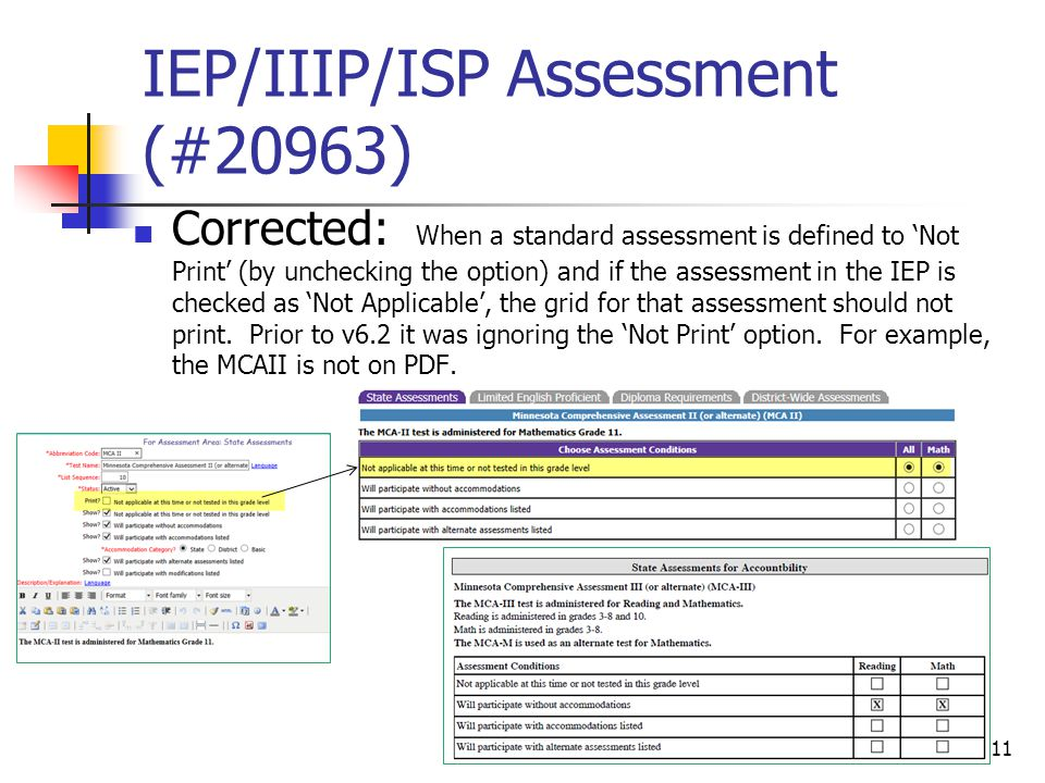 IEP/IIIP/ISP Assessment (#20963) Corrected: When a standard assessment is defined to 'Not Print' (by unchecking the option) and if the assessment in the IEP is checked as 'Not Applicable', the grid for that assessment should not print.