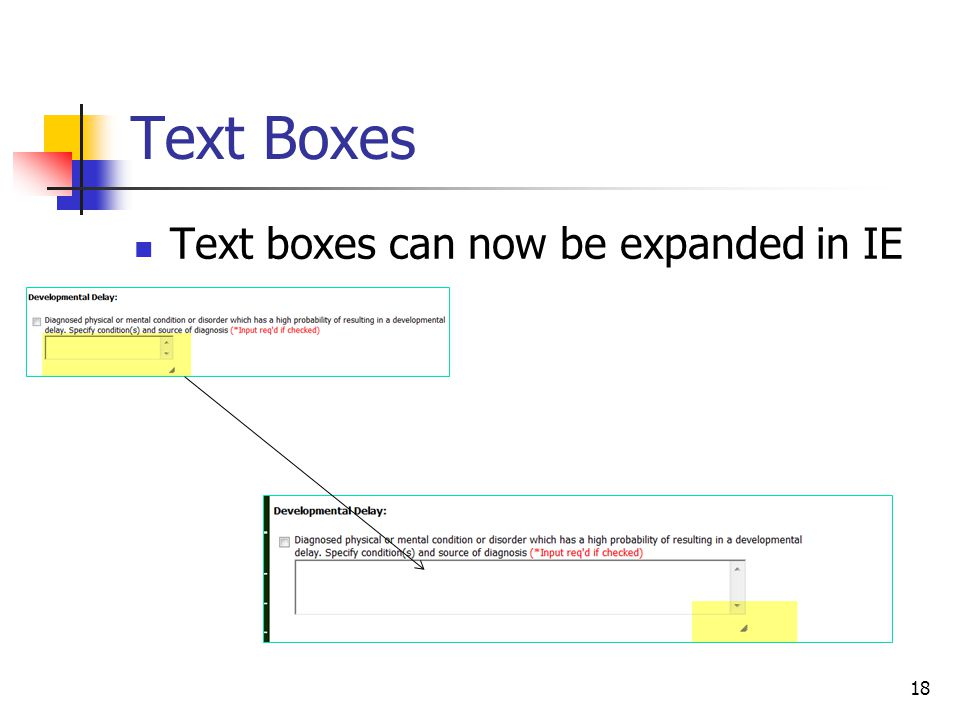 Text Boxes Text boxes can now be expanded in IE 18