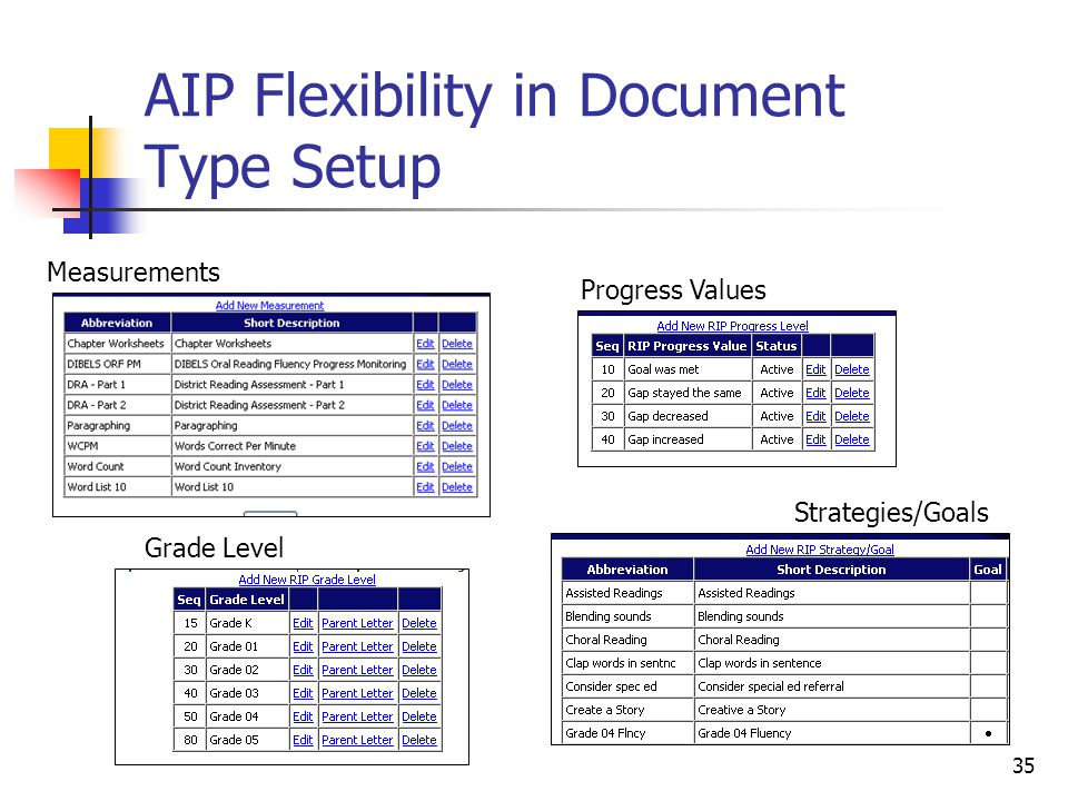 35 AIP Flexibility in Document Type Setup Measurements Grade Level Progress Values Strategies/Goals