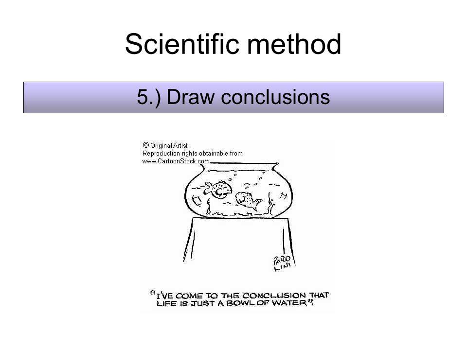 Scientific method 5.) Draw conclusions