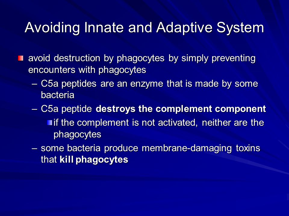Avoiding Innate and Adaptive System avoid destruction by phagocytes by simply preventing encounters with phagocytes –C5a peptides are an enzyme that is made by some bacteria –C5a peptide destroys the complement component if the complement is not activated, neither are the phagocytes –some bacteria produce membrane-damaging toxins that kill phagocytes