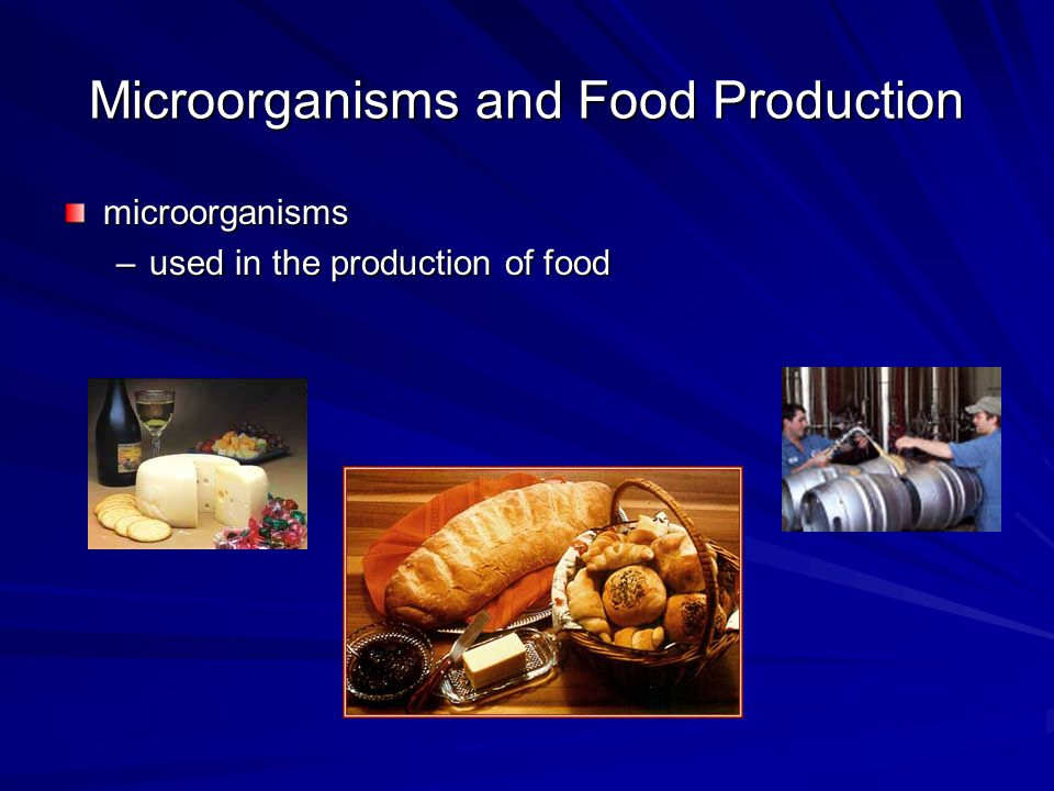 Microorganisms and Food Production microorganisms –used in the production of food