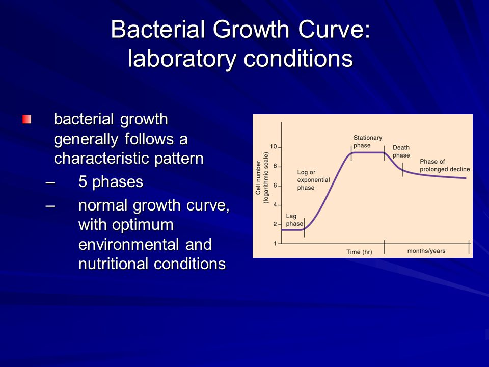 Bacteria Enumeration measuring biomass –turbidity –total weight –chemical constituents turbidity