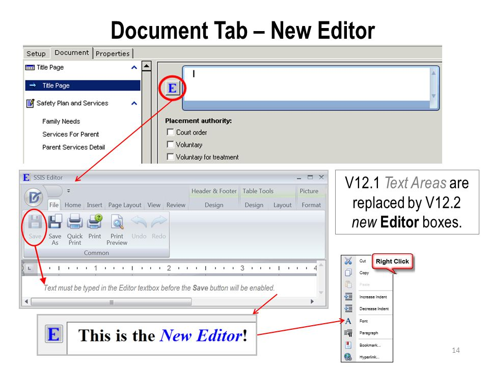 Document Tab – New Editor V12.1 Text Areas are replaced by V12.2 new Editor boxes. 14