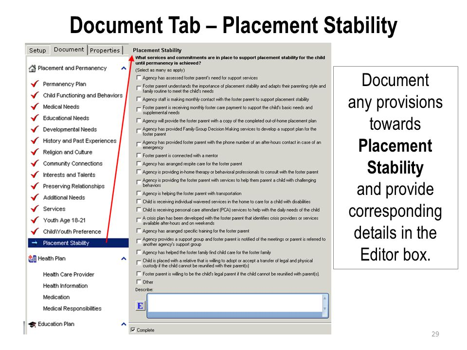 Document Tab – Placement Stability Document any provisions towards Placement Stability and provide corresponding details in the Editor box. 29