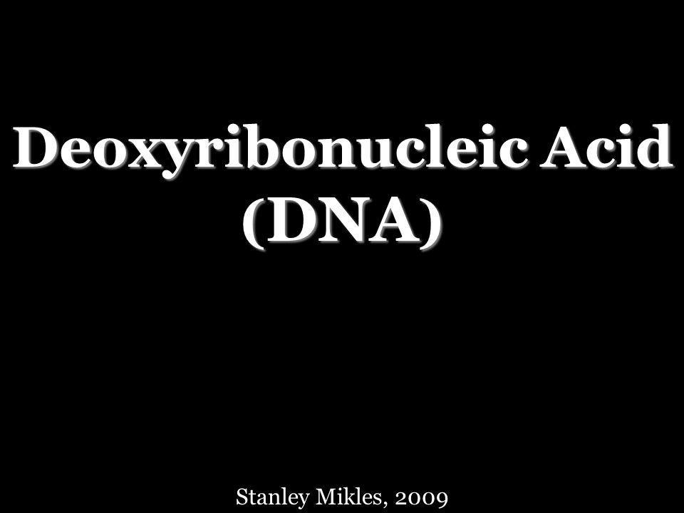 Deoxyribonucleic Acid ( DNA ) Stanley Mikles, 2009