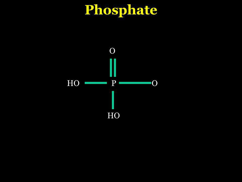 PO O HO Phosphate HO
