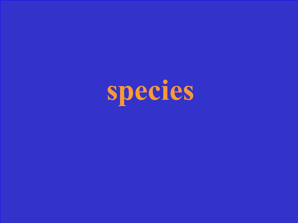 What is a group of similar organisms that can reproduce fertile offspring