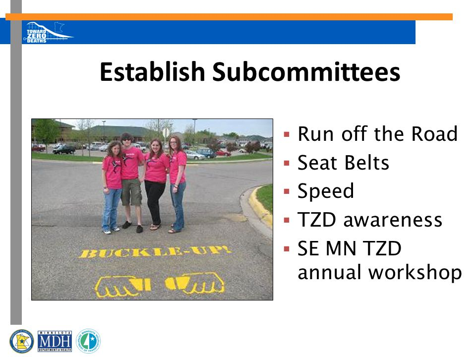 Establish Subcommittees  Run off the Road  Seat Belts  Speed  TZD awareness  SE MN TZD annual workshop