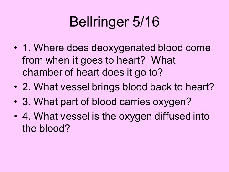 Bellringer 5/16 1. Where does deoxygenated blood come from when it goes to heart.