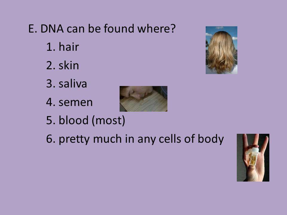 II.DNA Fingerprinting A.