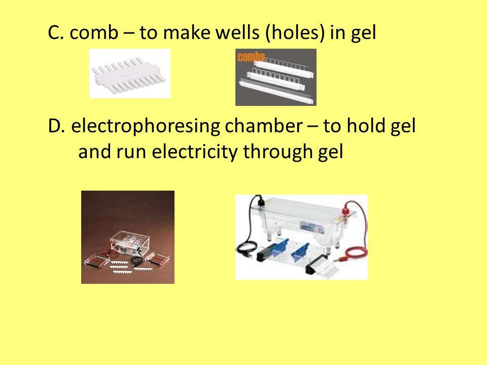 C. comb – to make wells (holes) in gel D.