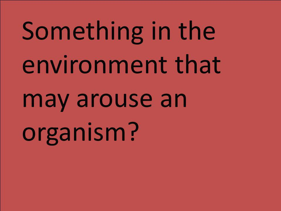 Something in the environment that may arouse an organism