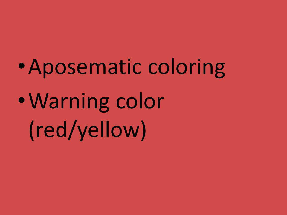Aposematic coloring Warning color (red/yellow)