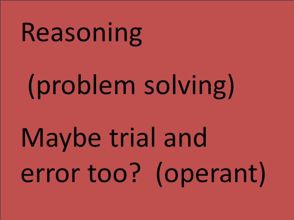 Reasoning (problem solving) Maybe trial and error too (operant)