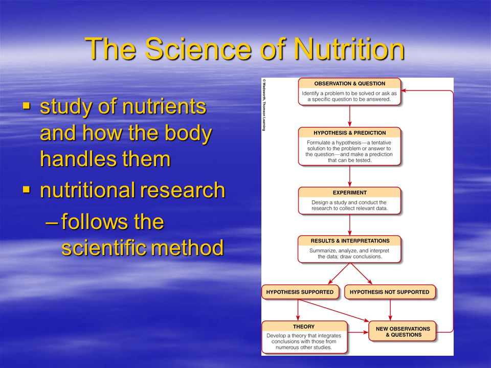 Non Energy Nutrients  water –absolutely essential for life –most all body activities involve water
