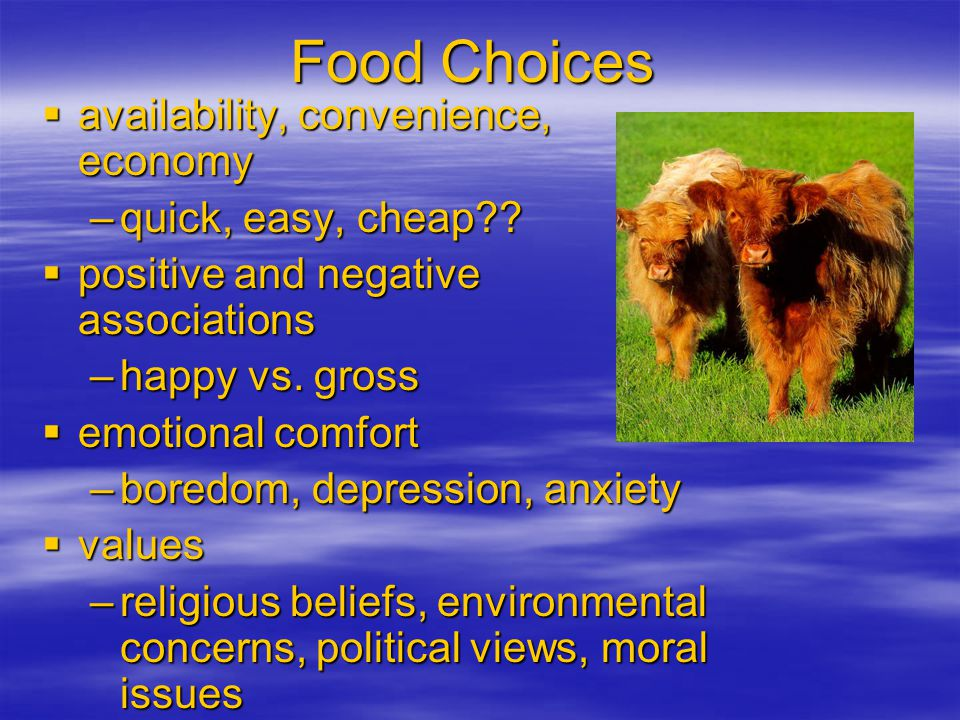 Food Choices  personal preference – taste  habit – PB and honey  ethnic heritage or tradition –eat what you grew up with  social interactions –eat