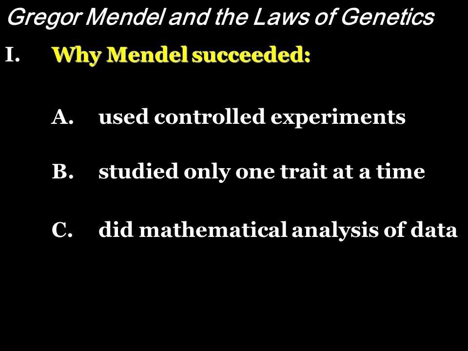 Mendel's work became, and still is, the foundation for modern genetics. However------- Mendel's work became, and still is, the foundation for modern g