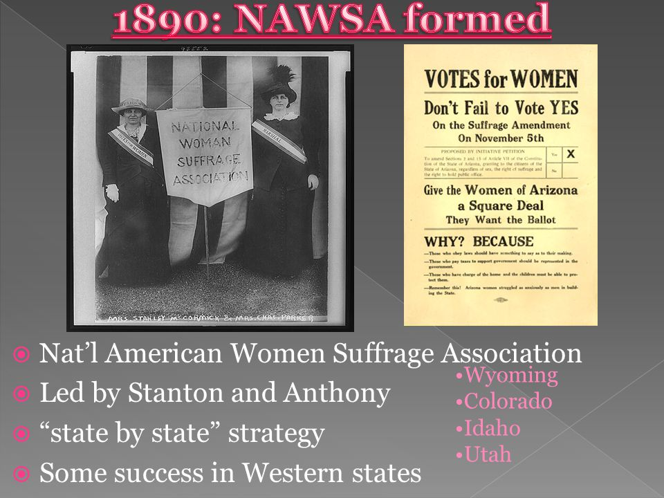  Nat'l American Women Suffrage Association  Led by Stanton and Anthony  state by state strategy  Some success in Western states Wyoming Colorado Idaho Utah