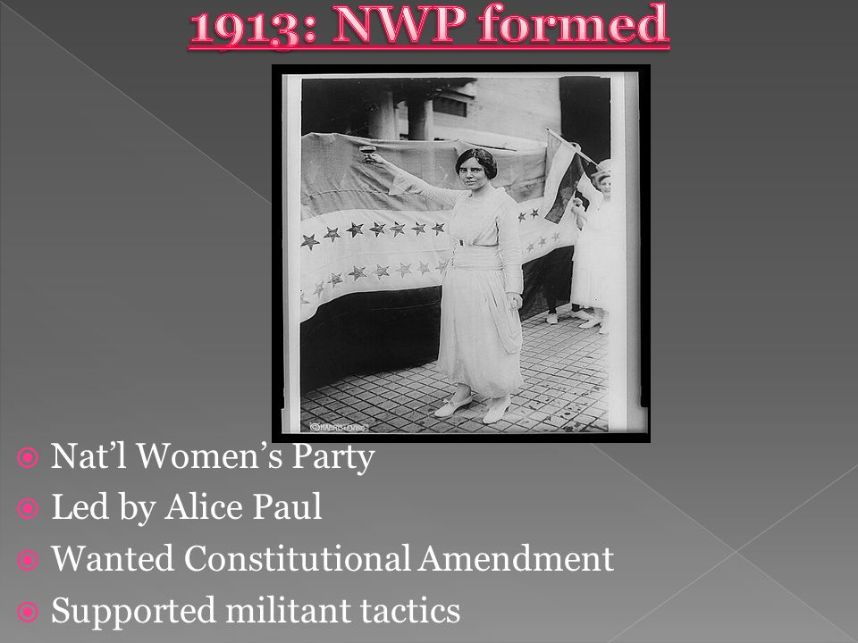  Nat'l Women's Party  Led by Alice Paul  Wanted Constitutional Amendment  Supported militant tactics