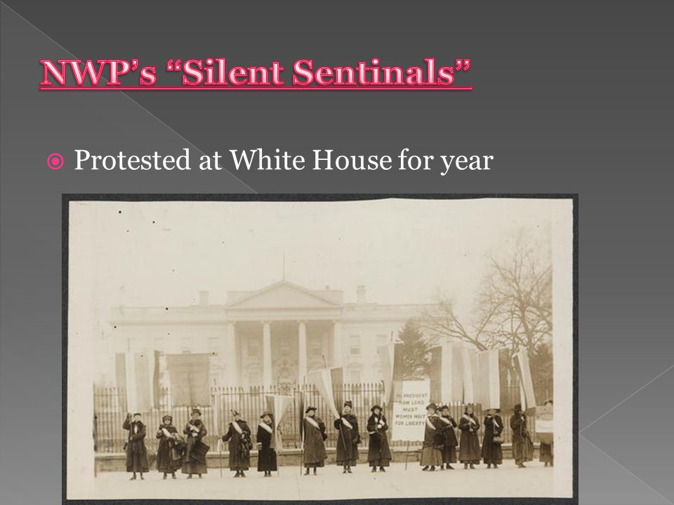  Protested at White House for year