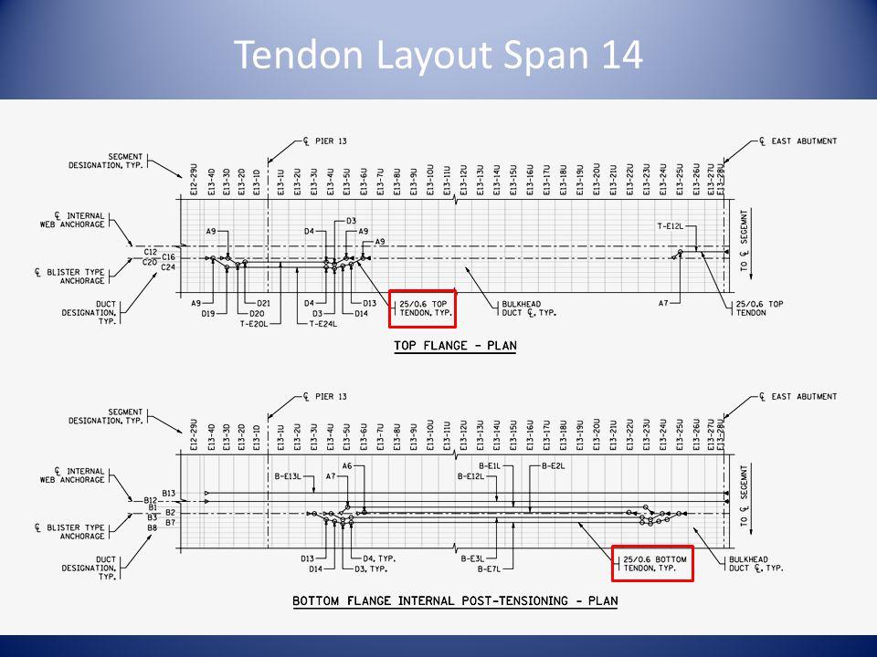 Tendon Layout Span 14