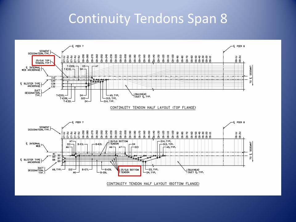 Continuity Tendons Span 8
