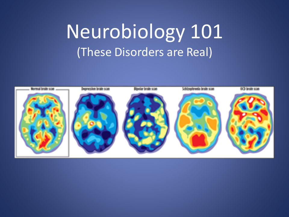 Neurobiology 101 (These Disorders are Real)