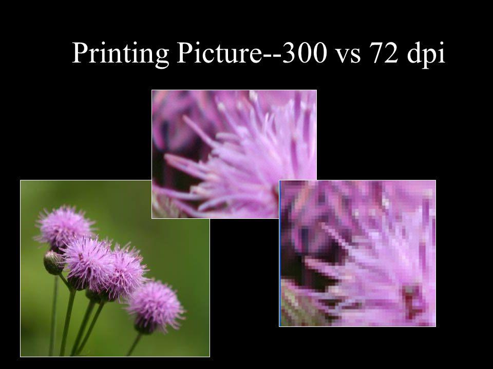 Printing Picture--300 vs 72 dpi
